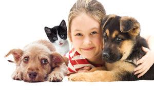 felicidad mascotas
